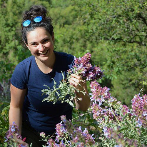 Orosz Anna aromaterapeuta
