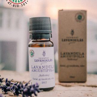 Hidcote – Lavandula angustifolia – BIO