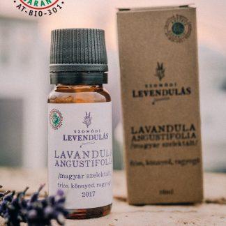 Magyar szelektált – Lavandula angustifolia – BIO