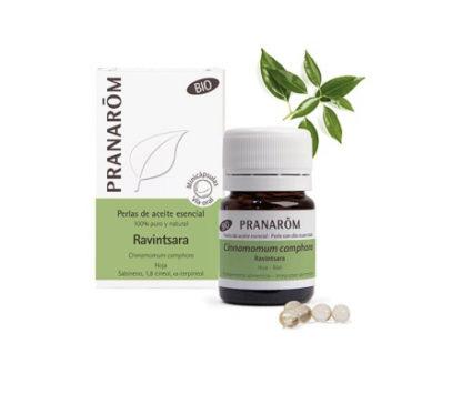 Ravintsara gyöngy – BIO – Pranarom