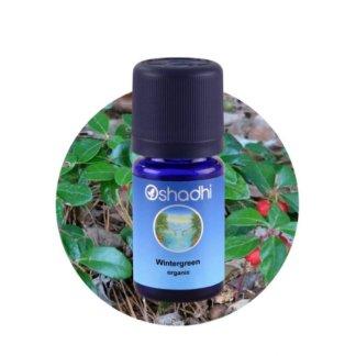 Kúszó fajdbogyó (Wintergreen, Gaultheria fragrantissima) – BIO